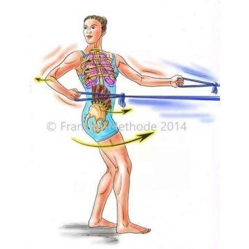 04. bis 05.05.19: Gelöster Brustkorb und Beckenboden-Bauchmuskeltraining nach der Franklin-Methode®