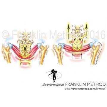 20. bis 21.07.19: Franklin-Methode®: Einführung in das Pilates-Training und Aktivierung der Lendenfaszie