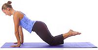 Yoga Pose: Anfängerplanke