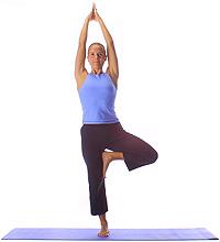 Yoga: Baum