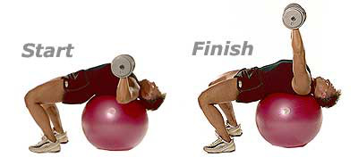 SISSEL® Gymnastikball: Hantelpresse